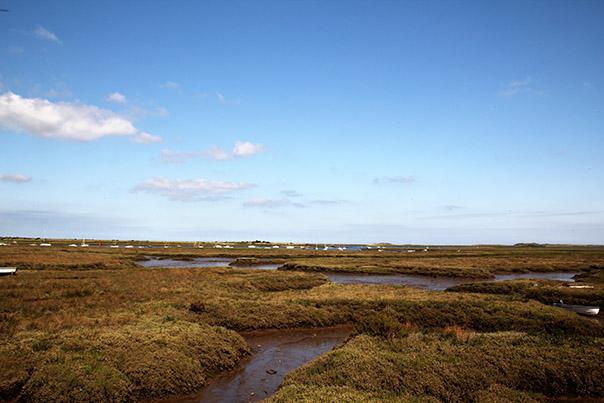 burnham deepdale marshes