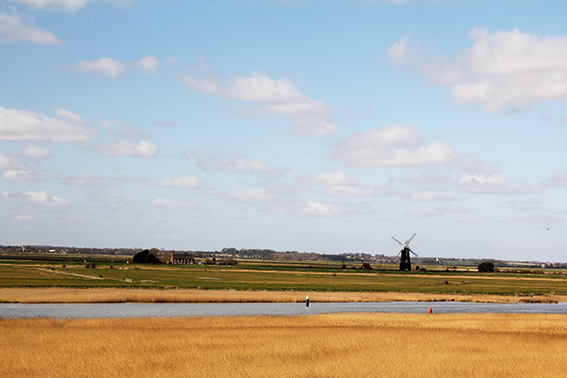 River Yare and windmill