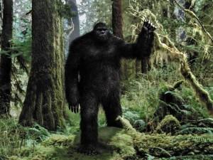 animal-bigfoot