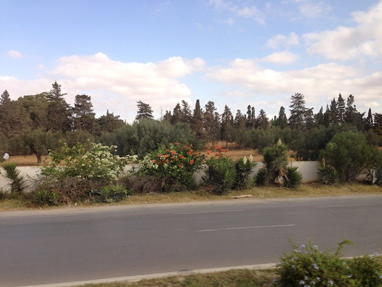 Дороги в тунисе