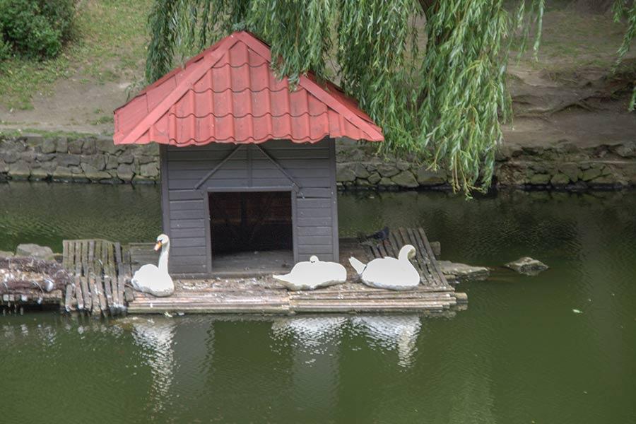 Лебединый домик