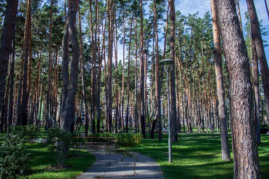 В центральном парке в Ирпене