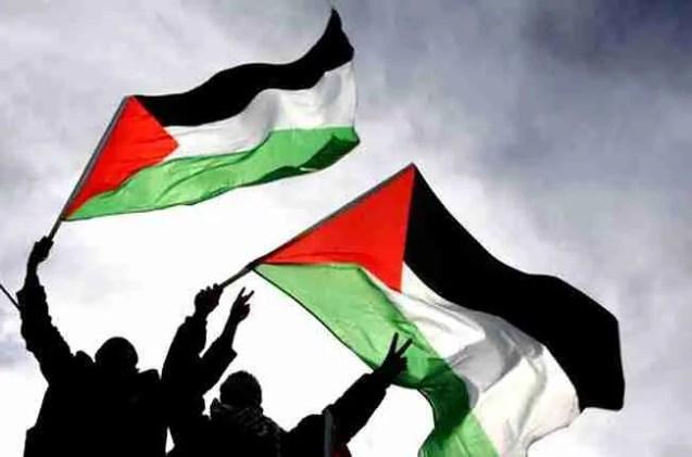 palestina estado palestino gaza unesco onu state palestinian UN
