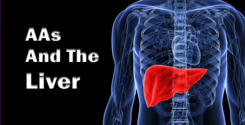 AAs And The Liver