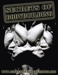 About-Us-SOB-logo