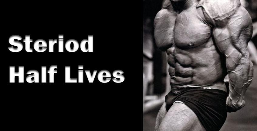 Steroid Half Lifes