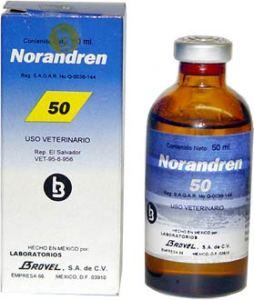 noradren50f-STEROIDS ONLINE