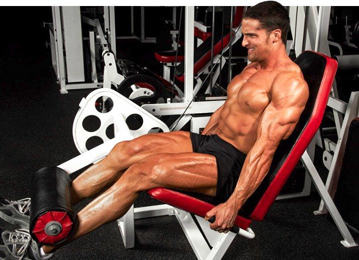 Layne Norton training legs