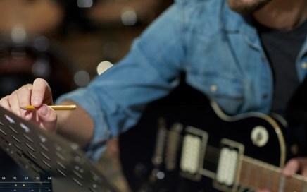 Guitarist - Songwriter - Lyricist