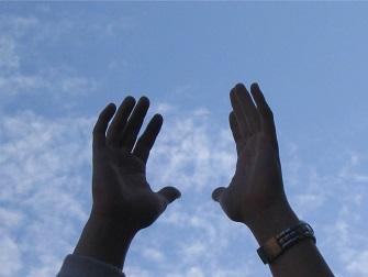hands reaching 335