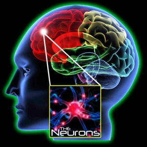 What is neuroplasticity and how does it work