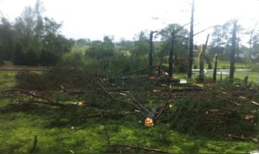 Damage in Limestone County