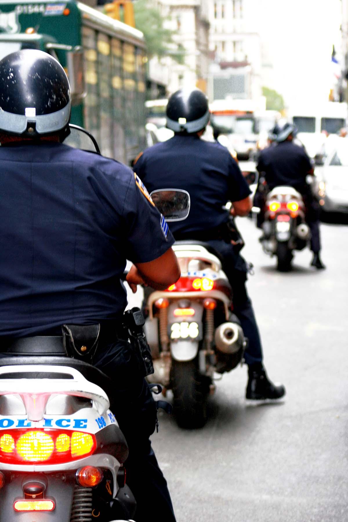 Indeed Security Guard Jobs NYC  Security Guards Companies