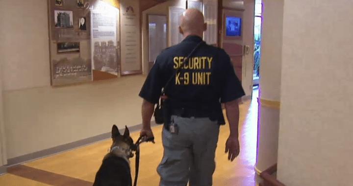 Security Jobs at Hospitals  Security Guards Companies
