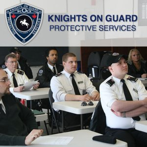 Knights On Guard Online Training Image