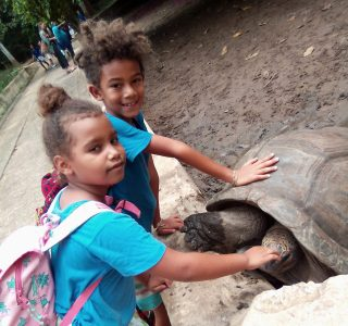 Zanzibar Zoo Trip SEC International School