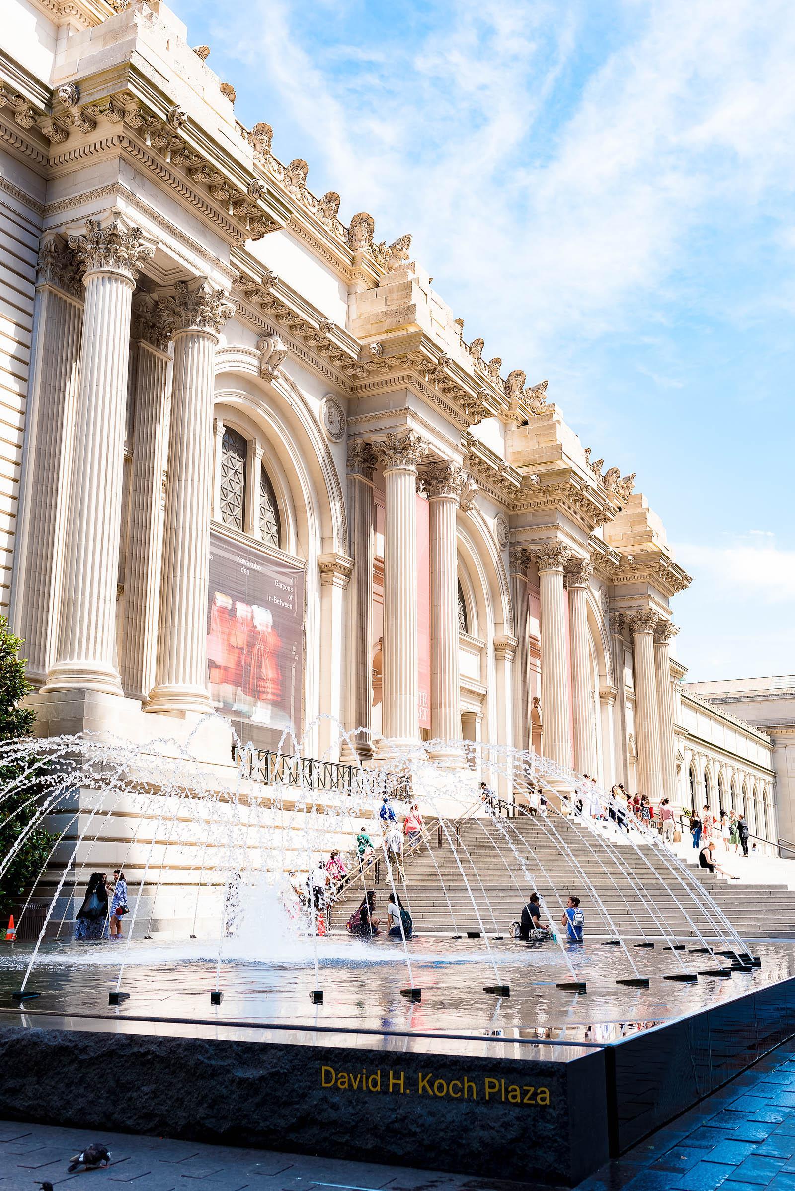 Nyc Metropolitan Museum Of Art - Sed Bona