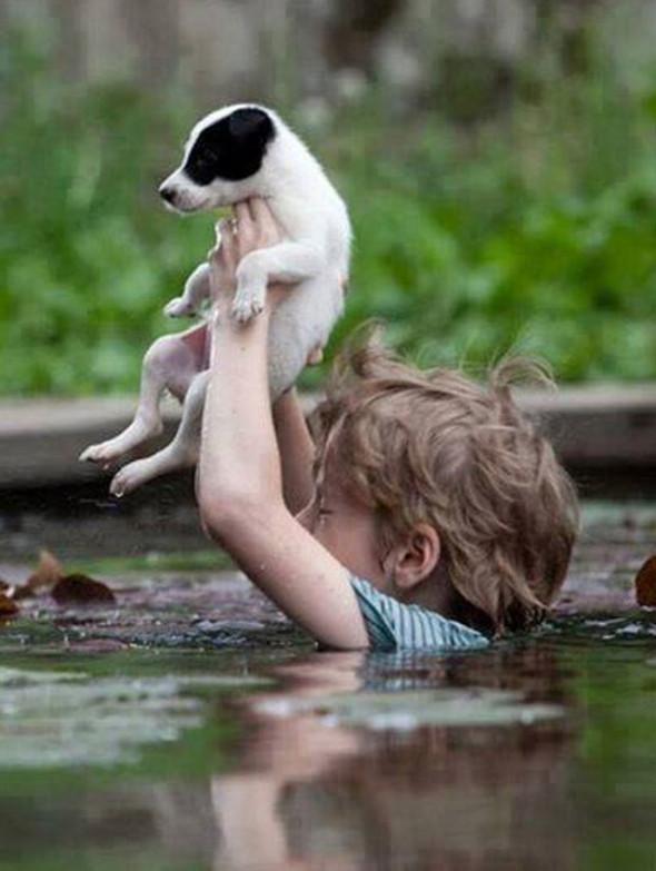 nino-salva-perro-inundaciones-serbia