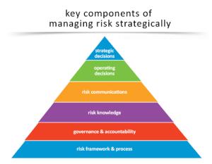 Achieving results through strategic risk management
