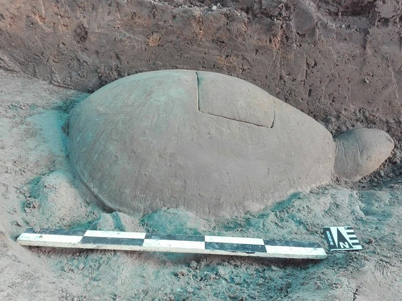 Uncovered Tortoise Statue