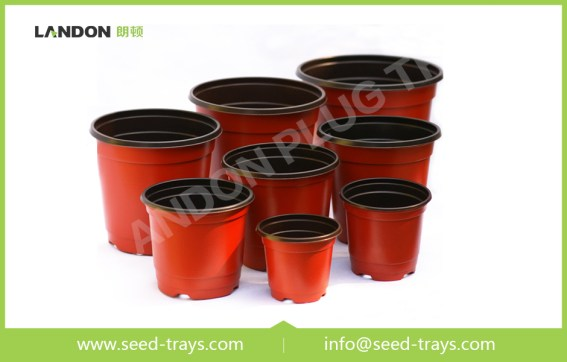 Colored Plastic Flower Pots