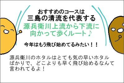 manga7_6
