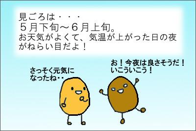 manga7_7
