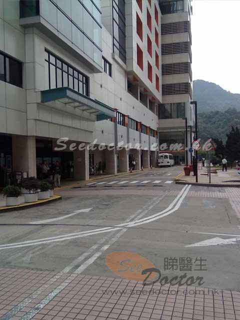 彭慶茵醫生 腸胃肝臟科 Dr Pang Hing Yan, Sandy| 彭慶茵醫生診所 電話 地址