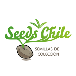 Seeds Chile