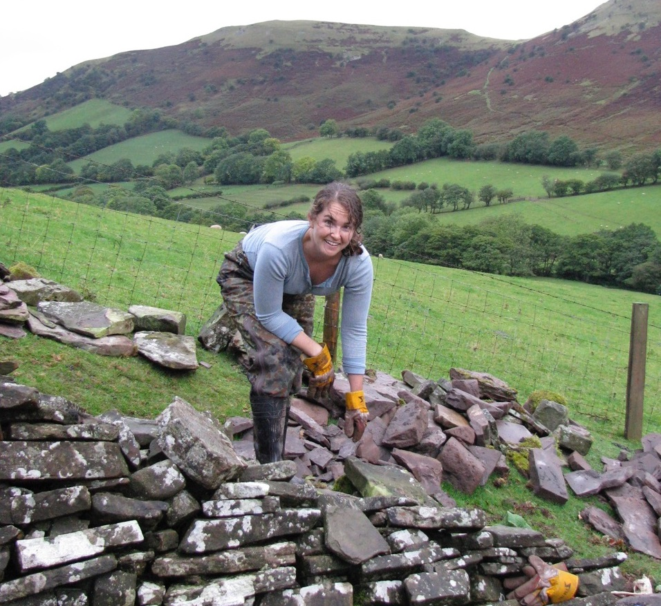 Announcing a Series of Drystack Stone Wall Workshops in