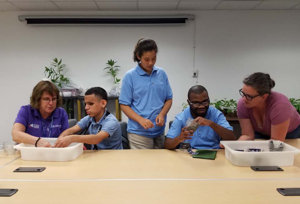 students from Lighthouse Central Florida's Transitions program work with Seminole County Master Gardeners to germinate lima bean seeds