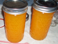 Quick and Easy Mango Syrup Recipe