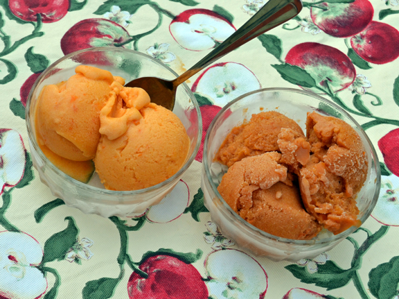 apricot sorbet recipes
