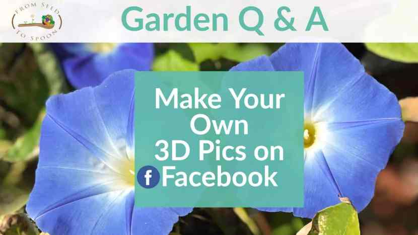 Q&A_ How to Creat 3D Pic