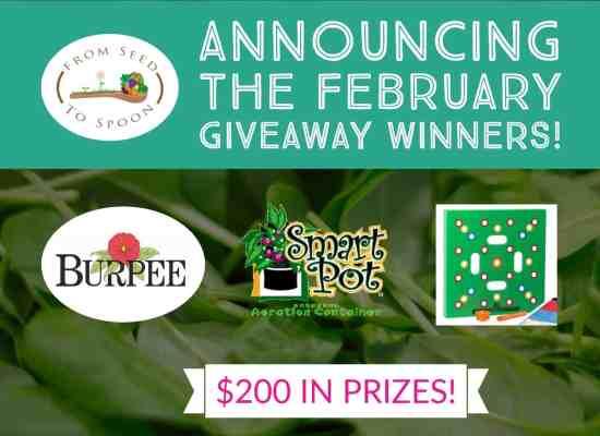 february winner announcement