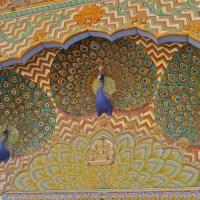Jaipur in 1 Day: City Palace, Hawa Mahal, Jantar Mantar and the Amber Fort