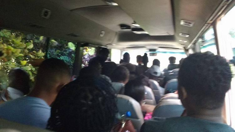 public transportation in jamaica tourist destination guide