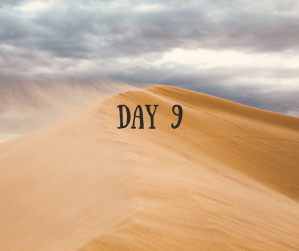 Desert Journey – Day 9