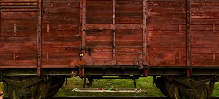 I Wish My Visit to Auschwitz was Irrelevant