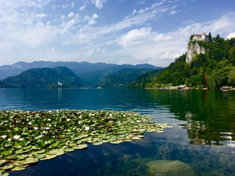 Water lilies and Lake Bled, captured on a smart phone.