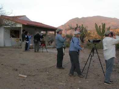 Birding at the Red_fronted Macaw Lodge
