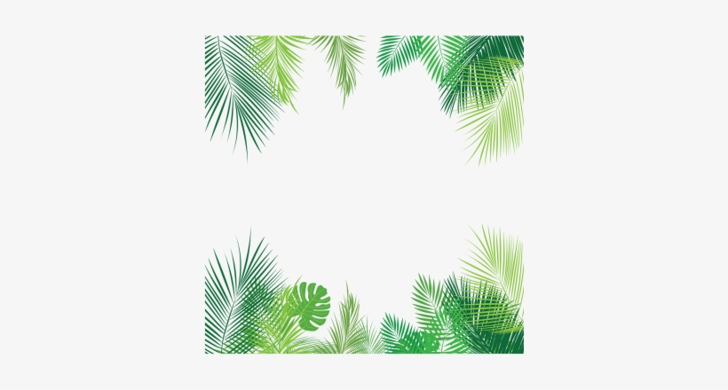 Tropical Leaves PNG Images  PNG Cliparts Free Download on SeekPNG