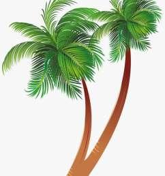free download cartoon palm tree clipart coconut palm palm tree cartoon jpg [ 820 x 1174 Pixel ]