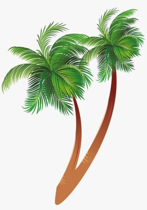 small resolution of free download cartoon palm tree clipart coconut palm palm tree cartoon jpg