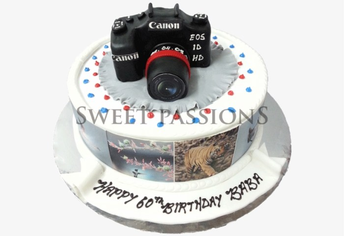 Cute Camera With Side Photos Birthday Cake Png Image Transparent
