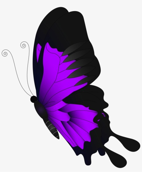 small resolution of purple clip art gallery flying butterfly clipart png