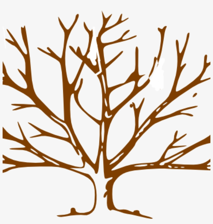 Bare Tree Clipart Brown Clip Art At Clker Vector Online Draw A Tree With Snow Png Image Transparent Png Free Download On Seekpng