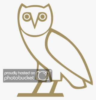 Ovo Owl Pictures