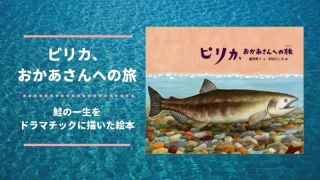 pirika-mother-salmon