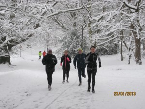 Runners in Sutton Park